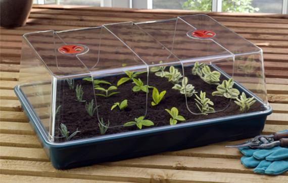 Zimmergewächshaus XXL praktisch für große Anzahlen Saatgut oder etwas höhere Stecklinge