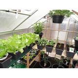 Mit Regale im Gewächshaus nutzen Sie das Raum und Klima optimal