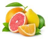 Exotische Früchte im Gewächshaus